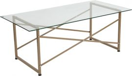 Outlook Collection Glass Coffee Table with Matte Gold Frame